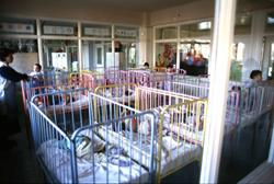 Babies in cribs